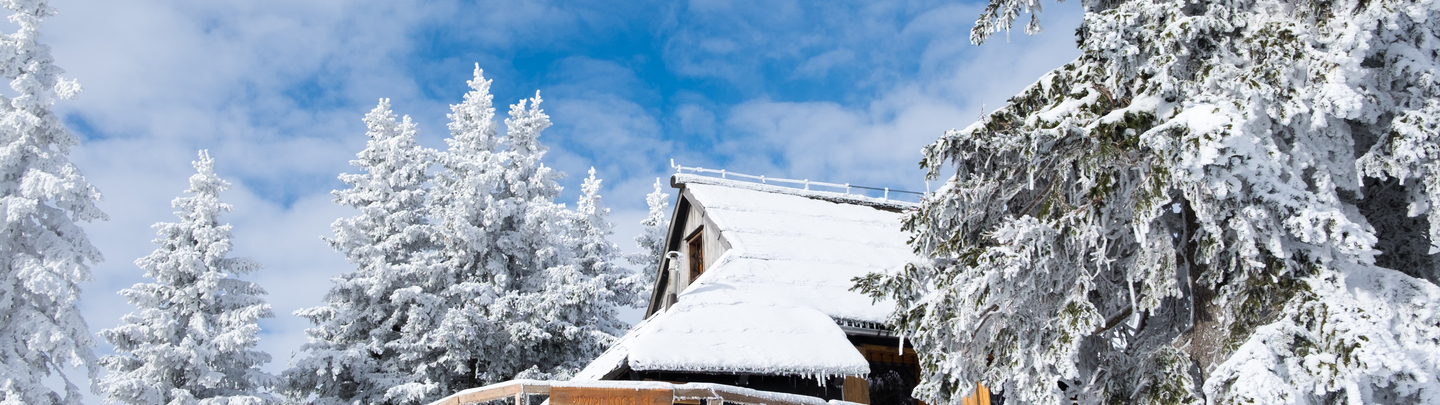 Cottage Bistra – Fairytale on Velika planina